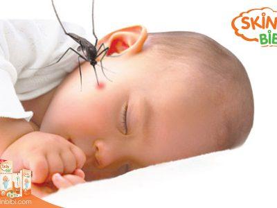 Cảnh báo nhiễm trùng máu do muỗi đốt ở trẻ nhỏ
